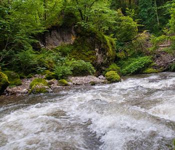 camping auvergne près de la rivière